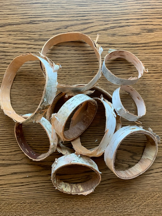 White birch rings, 1/2 inch wide with varies diameters, 10 count