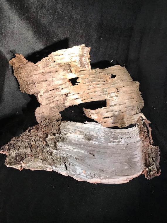 White birch bark and yellow birch bark combination