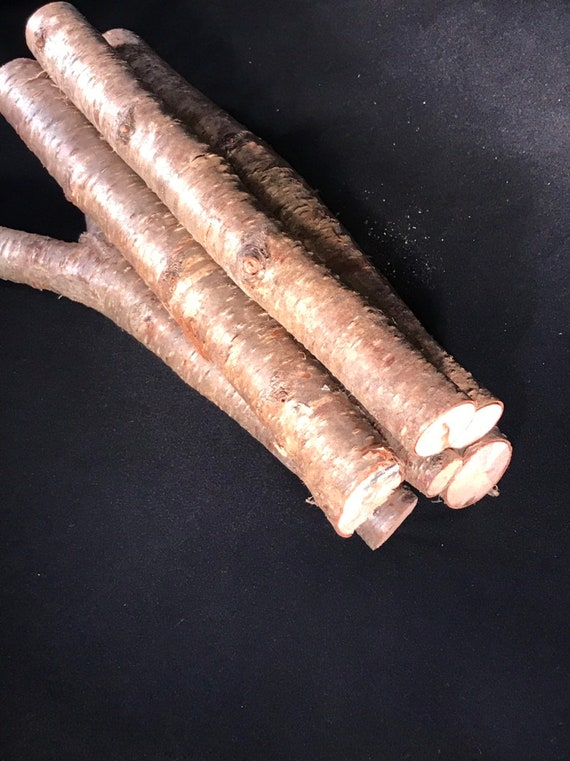 Yellow birch logs, six-pack, 12 inches long