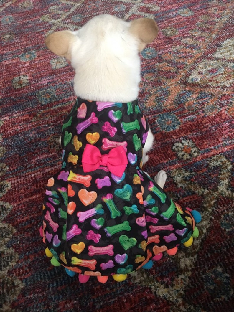 Limited Edition in size XS Rainbow Love Dog Dress