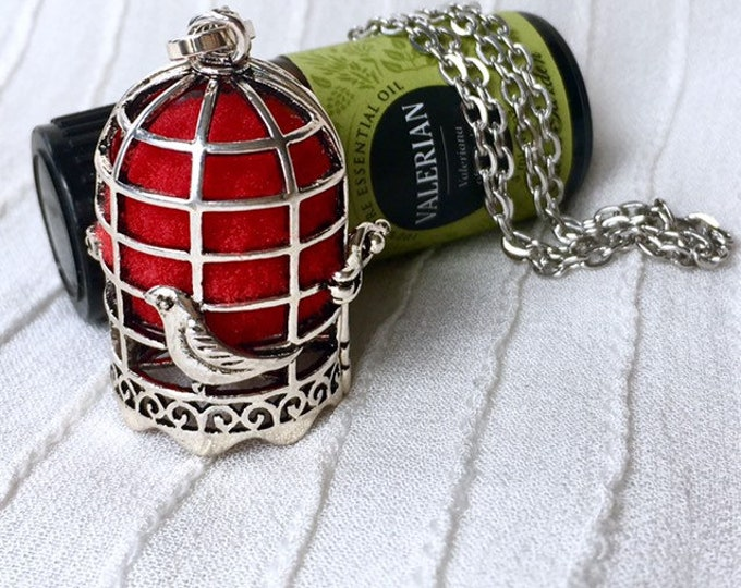 Essential Oils Necklace, Bird Cage Locket, Diffuser Necklace, Aromatherapy Pendant