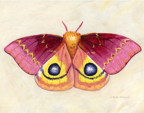 butterfly art nature lover moth print cute moth magical moth nature wall decor Moth art bright art art gift nature gift butterfly