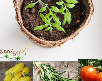 Plant Seed Growing Kit, Mediterranean Cooking Flavor Pack, 2 Unusual Tomatoes & Rosemary For Your Balcony, Terrace, Garden Housewarming Gift