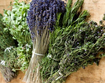 Herbs de Provence growing seed kit for balcony, terrace, kitchen window, French cooking herbs mix, marjoram, lavender, rosemary, savory, thy