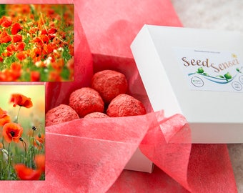 Poppy seed bomb pack, round red seed bombs, handmade seed bombs, eco friendly gift, plantable bee friendly flowers, remembrance day gift