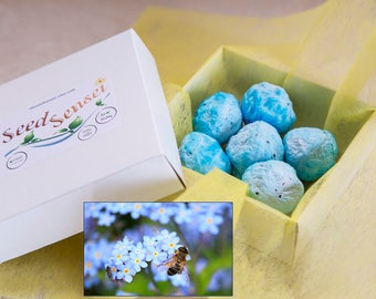 Forget me not seed bomb pack, round blue seed bombs, handmade myosotis seed bombs, eco friendly gift, plantable bee friendly flowers