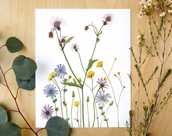 Wildflowers Botanical Giclee Print | Watercolor Botanical Artwork