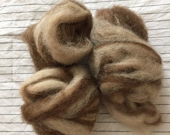 Shetland Sheep Roving - Tweed