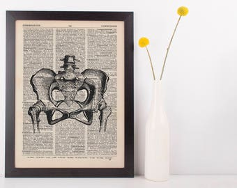 Anatomical Hips and Pelvic Joints Dictionary Art Print,Medical Anatomy Vintage