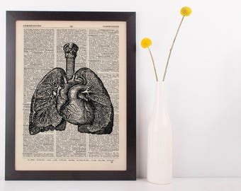 Anatomical Heart Lung & Spine Dictionary Art Print,Medical Anatomy Vintage