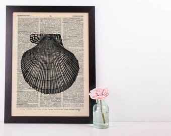 Scallop Shell Dictionary Illustration Art Print Vintage Sea Life Nautical
