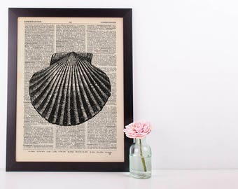 Scallop 2 Shell Dictionary Illustration Art Print Vintage Sea Life Nautical