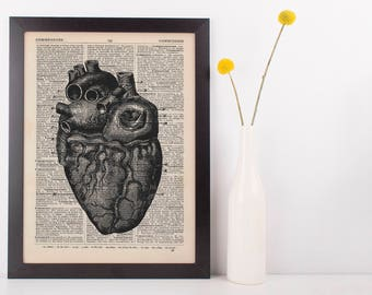 Anatomical Heart 2 Dictionary Art Print, Medical Alternative Anatomy Vintage