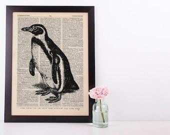 Penguin Dictionary Illustration Art Print Vintage Sea Life Nautical