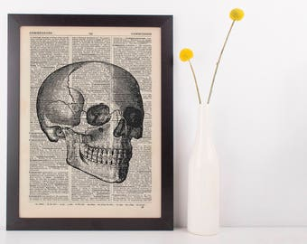 Anatomical Right Facing Skull Dictionary Art Print,Medical Anatomy Vintage