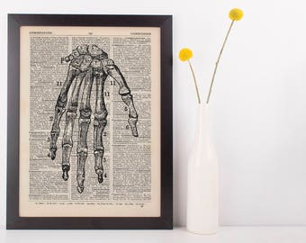 Anatomical Hand Bones Dictionary Art Print, Medical Alternative Anatomy Vintage
