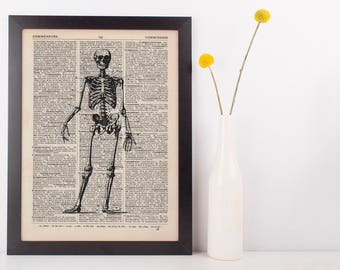 Anatomical Front Facing Skeleton Dictionary Art Print, Medical Anatomy Vintage