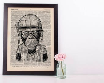 Army Monkey Dictionary Art Print Set Animals Clothes Anthropomorphic Human