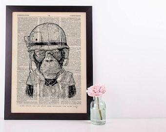 Army Monkey Dictionary Art Print Set Animals Clothes Anthropomorphic Human