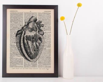 Anatomical Heart Dissection Dictionary Art Print, Medical Grey's Anatomy Vintage