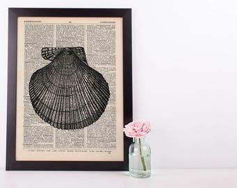 Scallop Shell Dictionary Illustration Art Print Vintage Sea Life Nautical