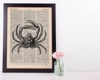 Crab 1 Dictionary Illustration Art Print Vintage Alternative Sea Life Nautical