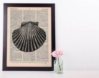 Scallop 2 Shell Dictionary Illustration Art Print Vintage Sea Life Nautical