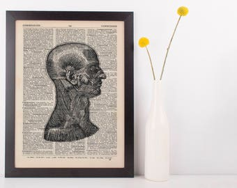 Anatomical Side Muscle Dissection Dictionary Art Print,Medical Anatomy Vintage