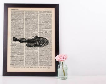 Cat Fish Dictionary Illustration Art Print Vintage Alternative Sea Life Nautical