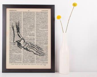 Anatomical Foot Bones Dictionary Art Print, Medical Alternative Anatomy Vintage