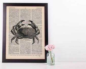 Crab With Large Pincers Dictionary Illustration Art Print Vintage Sea Nautical
