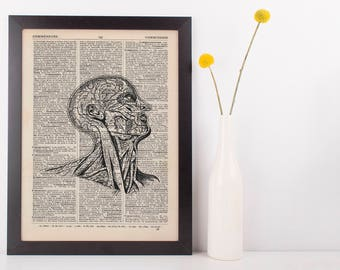 Anatomical Side Head Dissection Dictionary Art Print,Medical Anatomy Vintage