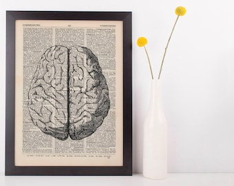 Anatomical Brain Dictionary Art Print, Medical Gross Anatomy Grey's Vintage