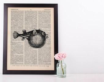 Puffer Fish Dictionary Illustration Art Print Vintage Sea Life Nautical
