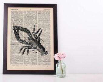 Lobster 1 Dictionary Illustration Art Print Vintage Sea Nautical