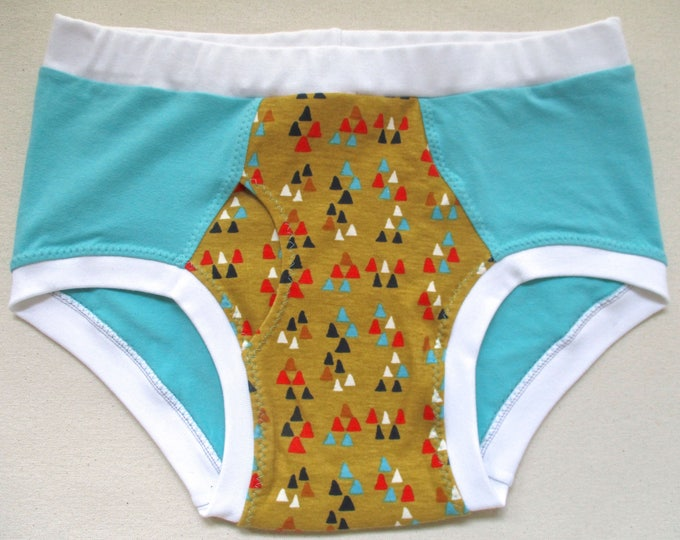 Turquoise and Triangles - Organic Cotton Briefs for Fellows