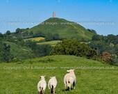 Springing To Glastonbury Tor - Square Photographic Print