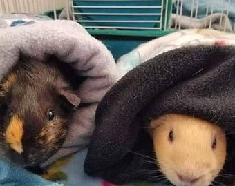 Small Animal Cuddle Sack with Quilt Batting