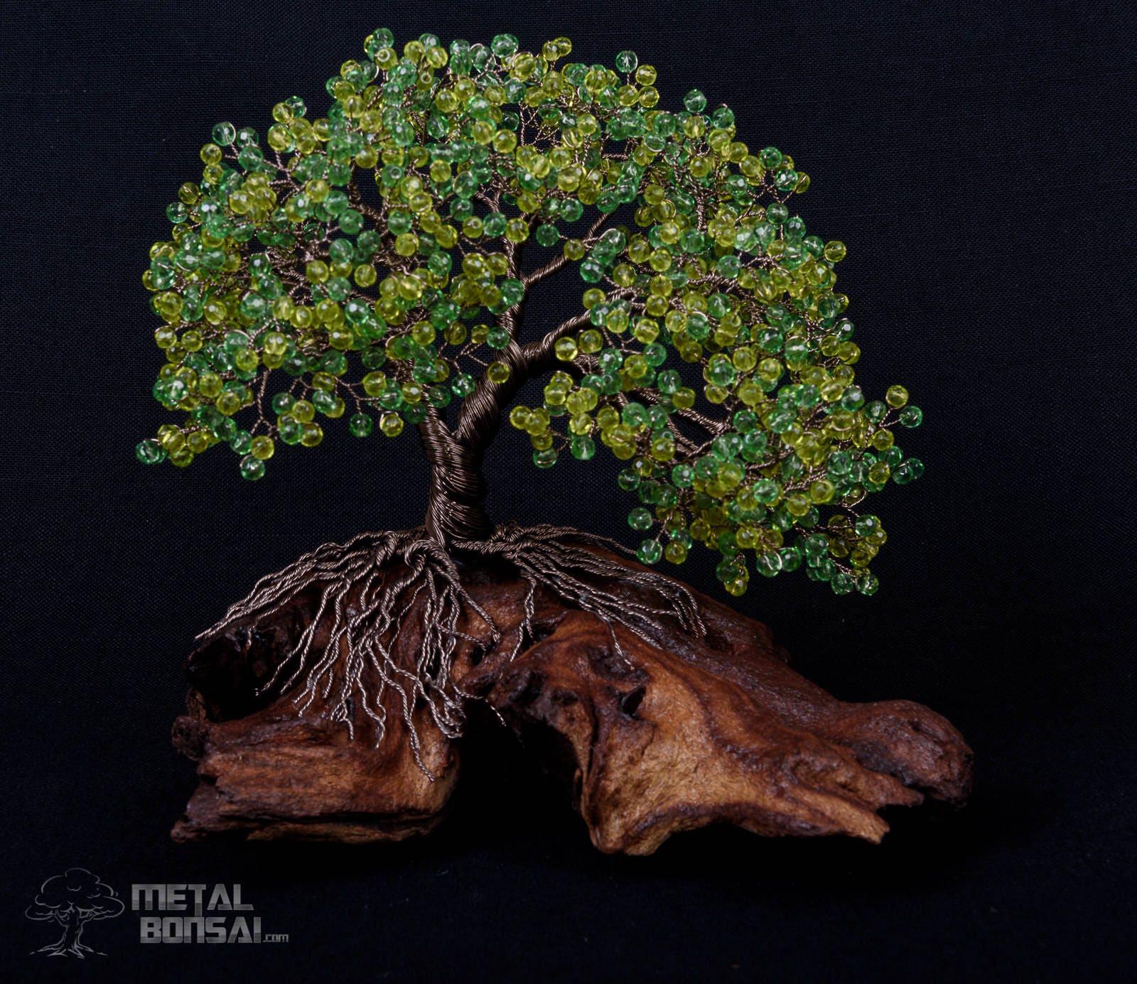 Wunderbar Draht Bonsai Baum Galerie - Elektrische Schaltplan-Ideen ...