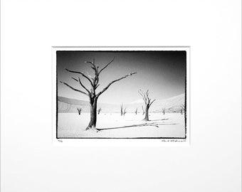"Danilo Böhme ""Deadvlei"", Black and White Photography, FineArt Print in Passepartout, Original, Vintage Print, Limited, Signed"