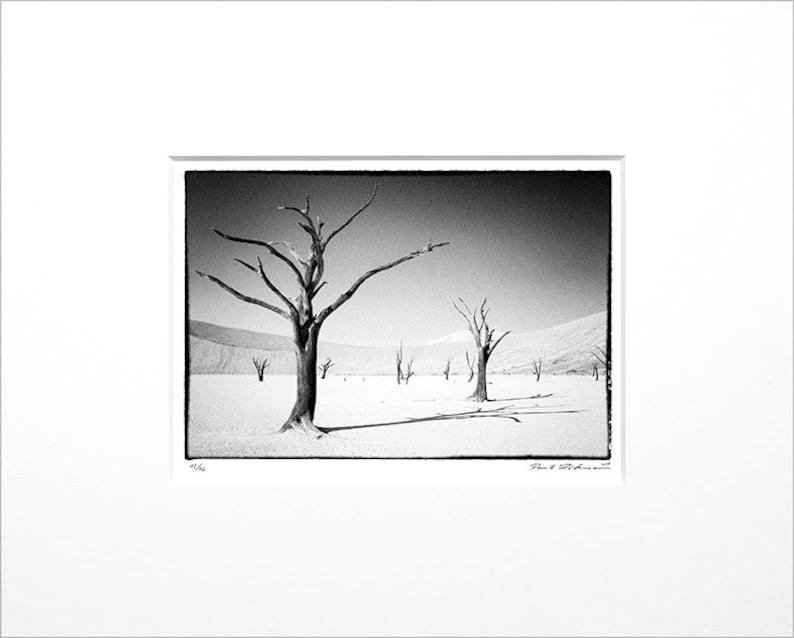 Danilo Böhme Deadvlei Black and White image 0