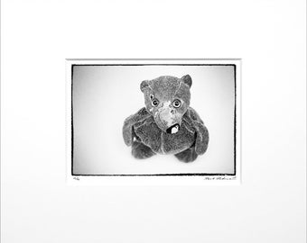 """Danilo Böhme """"Teddy"""", Black and White Photography, FineArt Print in Passepartout, Original, Vintage Print, Limited, Signed"""