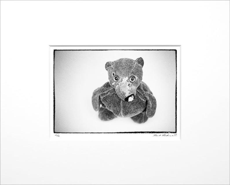 Danilo Böhme Teddy Black and White Photography image 0