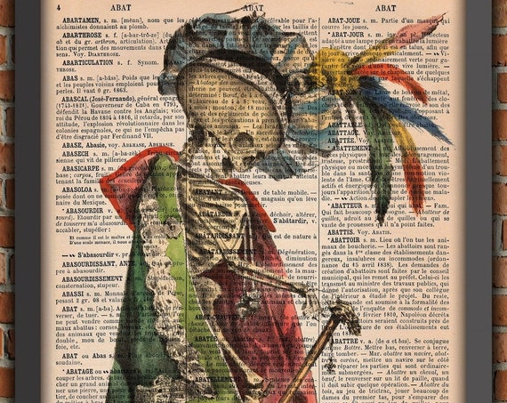 Memento Mori Skeleton, Gothic poster, Gift from France, skeleton print, Vintage Art Print, Home Decor, Original French Dictionary Print