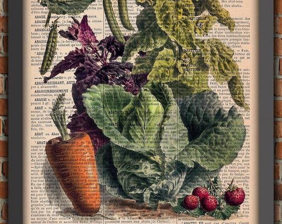vintage prints kitchen poster illustration vegetables old botanical gardener vegan vegetarian vegan authentic french book page garden