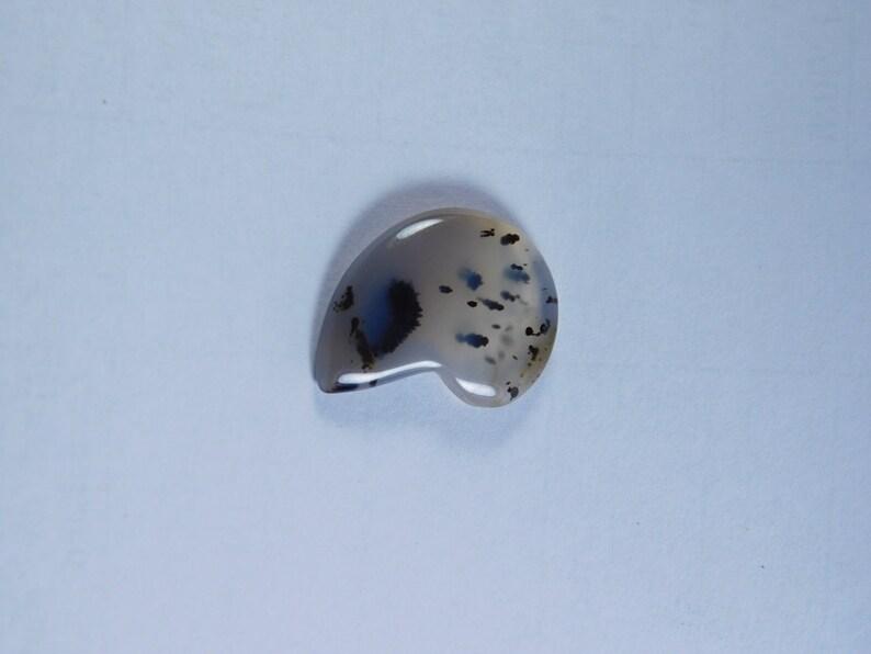 10 Pcs Natural Tiger Dendritic Agate Lot Tiger Dendritic Agate Cabochons Agate loose stone 162Cts. Tiger Dendritic Agate Gemstone