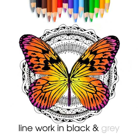 Lace Butterfly Coloring Page Digital Stamp Adult Coloring Etsy