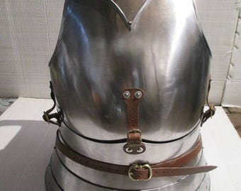 Breastplate and Backplate (SCA Combat)