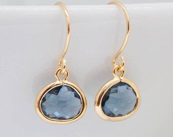 Earrings Blue dark blue Navy navy pierced