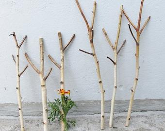 "Set of 3 Birch Branches 16.5"",  Real Dried Birch Sticks, Natural Decor"